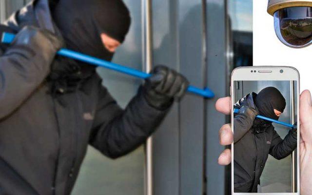 5-prevencion-vandalos-delincuentes